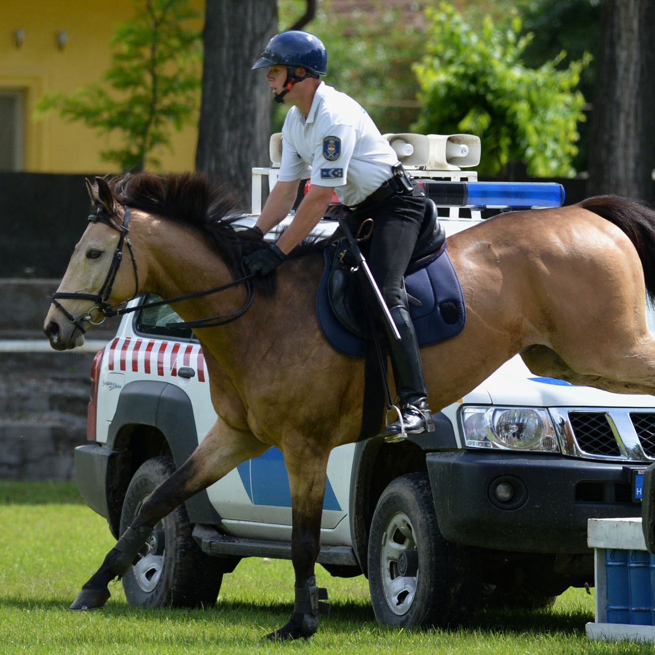 Magyar lovas rendőrség
